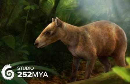 Cambaytherium thewissi