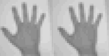 Изображение руки: оригинальное (слева) и считанное с генома (справа)