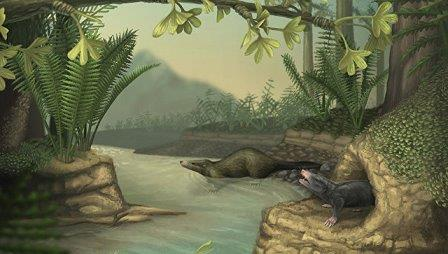Теплокровная фауна Китая во время юрского периода