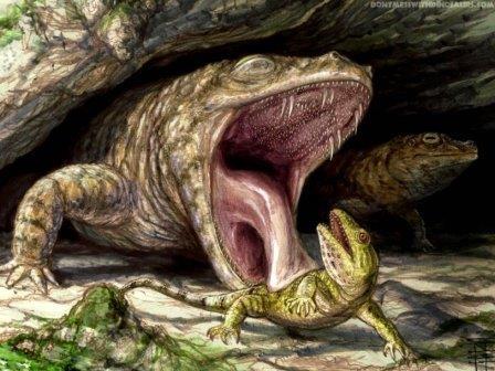 Темноспондил вида Cacops morrisi