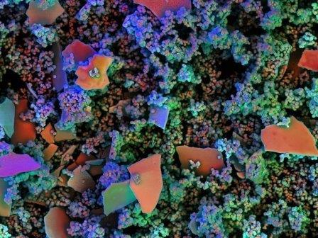 Калейдоскоп наноструктурированных систем оксисульфидов висмута
