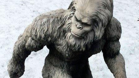 «йети» или «снежный человек»