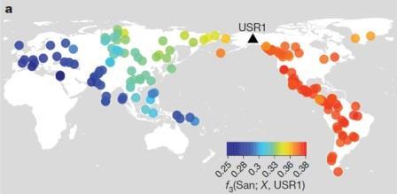 Степень генетического родства USR1 с представителями 167 человеческих популяций