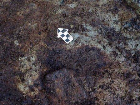 Человеческие следы возрастом 13 тысяч лет найдены в Канаде© Duncan McLaren
