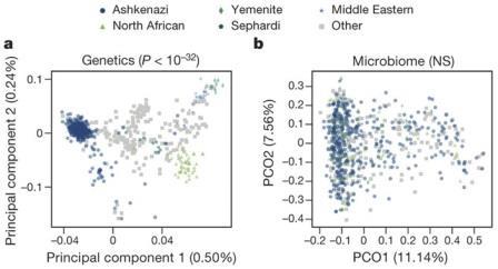 Данные по происхождению людей из израильской выборки коррелируют с генетическими данными, но не с составом кишечной микробиоты