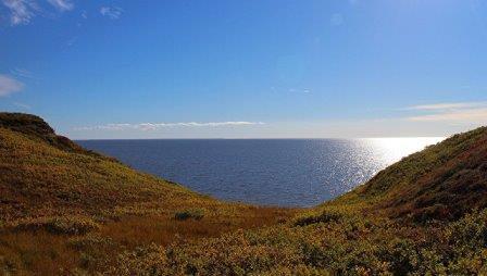 Побережье Карского моря © Кира Чевель
