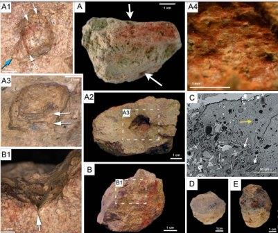 Куски пигмента из Олоргесайли