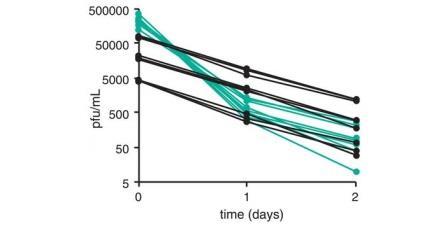 Рис. 3. Динамика разрушения вирусных частиц при 37°С.