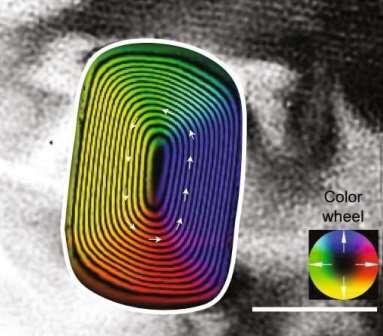 Магнитная индукционная карта магнитно-неоднородного зерна камасита (состоящего в основном из железа), который заключен в пыльный кристалл оливина в метеорите. Стрелки и цветовое колесо указывают направление магнитной индукции. Шкала шкалы: 200 нм. © Иллюстрация из статьи в Nature Communications