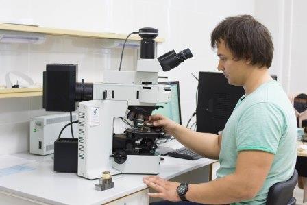Многофункциональный микроскоп Olympus, позволяющий рассматривать трехмерные периодические структуры