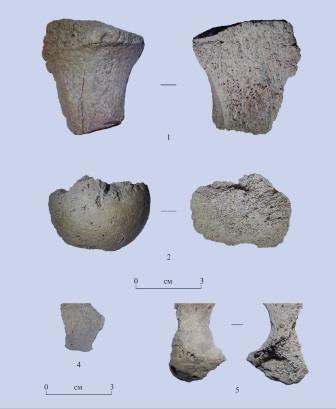 Антропологические находки в Туяне
