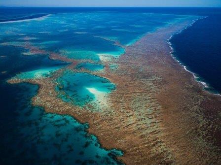 Большой Барьерный риф © Gary Cranitch, Queensl
