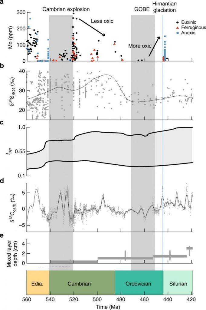 Данные окружающей среды позднего неопротерозоя и раннего палеозоя © Nature Communications