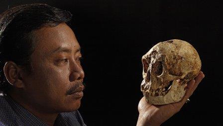 Карликовый череп найденный на острове Флорес в Индонезии © AP Photo / Ira Block