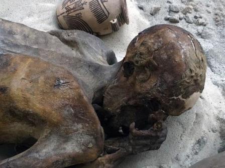 Одна из гебелейнских мумий (взрослый мужчина EA32751) Пример природной мумификации