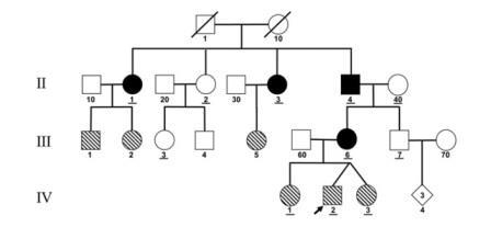Рис. 2.Генеалогическое древо пациента А