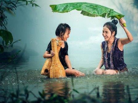 Дождь в тропиках © Pixabay