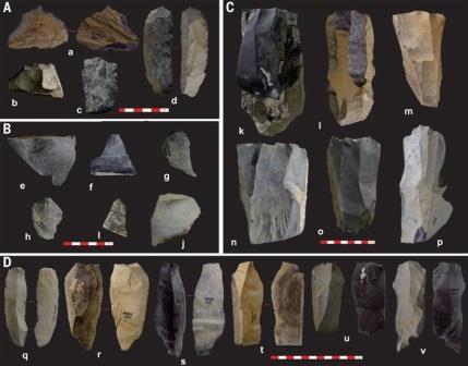 Рис. 2.Каменные орудия с высокогорной палеолитической стоянки Нвия