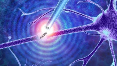 Нанопипетка, способная захватывать одиночные молекулы в живых клетках © Imperial College London