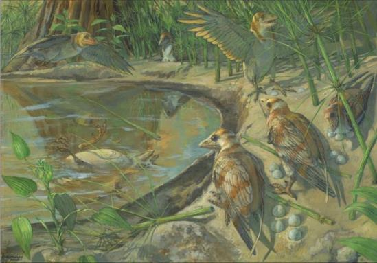 В воде видна умершая самка Avimaia schweitzerae. Яйцо находится внутри самки. На берегу сидят другие представители вида.© Michael Rothman / CC BY 4.0