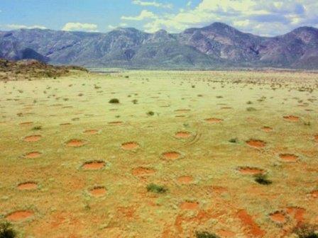 Ведьмины круги в Намибии© Thorsten Becker