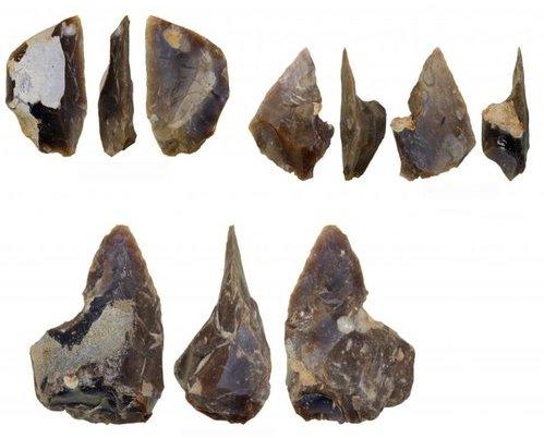 В Польше нашли мастерскую неандертальцев © Andrzej Wiśniewski
