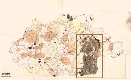 Тонкий слой метеорита ALH-77005 в плоскости поляризованного света: область, изученная FTIR-спектроскопией, обозначена прямоугольником - в ней предположительно наблюдается микробно-опосредованное изменение © Gyollai et al