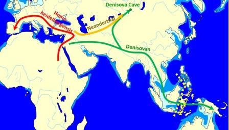 Карта миграций различных видов человека из Африки. Передвижения денисовцев показаны зеленым© John D. Croft / Wikimedia Commons / CC BY-SA 3.0