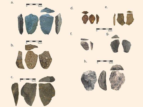 Найденные в Бокол-Дора артефакты© David Braun et al.