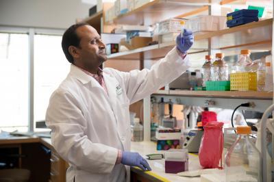 Доктор Винет Гупта из Медицинского центра Университета Раша исследует новые способы, помогающие иммунной системе бороться с раком поджелудочной железы© Rush Production group