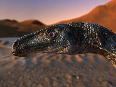 Vespersaurus paranaensis© Rodolfo Nogueira