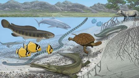 Художественная концепция Транс-Сахарского морского пути© Carl Buell (AMNH)