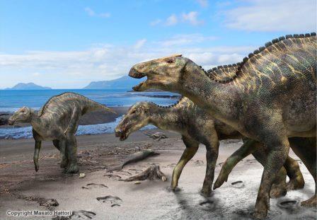 Реконструкция Kamuysaurus japonicus© Kobayashi Y., et al, /Scientific Reports