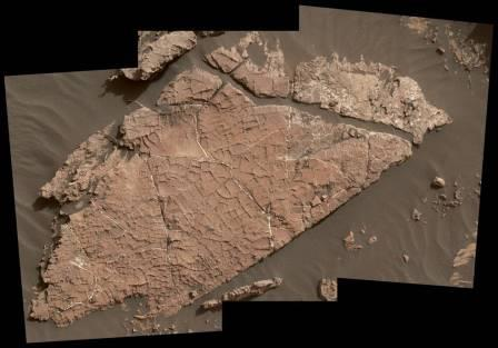 Сеть трещин в этой марсианской каменной плите под названием «Old Soaker»