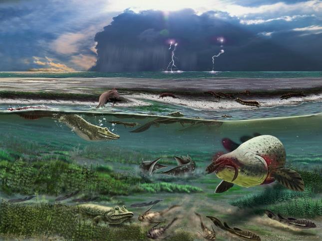 тропическая прибрежная лагуна в Сосногорске в России, около 372 миллионов лет назад