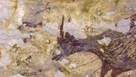 В Индонезии нашли древнейшие наскальные изображения возрастом 44 тысячи лет