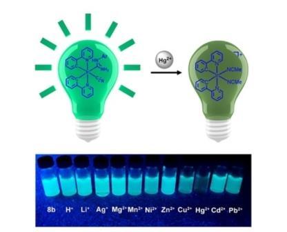 Химики СПбГУ разработали высокочувствительный сенсор для выявления ртути в окружающей среде