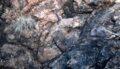 Древние породы Пилбары © Jana Meixnerova, Benjamin Johnson