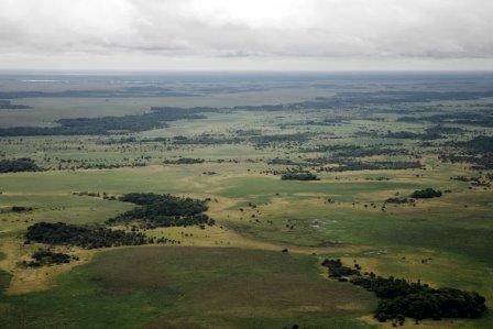 Бесконечные равнины саванны Льянос-Мохос ©Sam Beebe, Flickr