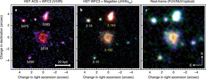 Объект R5519 и его окрестности © Tiantian Yuan et al./ Nature Astronomy,2020