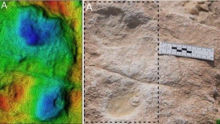 Эти следы были оставлены грязными ногами древних людей, когда они пересекали берег озера в Саудовской Аравии около 120 тысяч лет назад. © Mathew Stewart et al., 2020