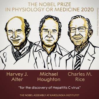 Нобелевскую премию по физиологии и медицине присудили за открытие вируса гепатита С