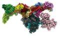 Визуализация структурыMed-PIC в 3D © Northwestern University