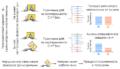 Иллюстрация эффекта нуклеотидных замен в регуляторном участке генома. Если при замене нарушается связывание транскрипционного фактора с «посадочной площадкой», то чтение подконтрольного гена происходит неправильно, что может привести к развитию патологий. Источник: Иван Кулаковский