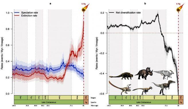 На графике слева синим показаны темпы видообразования, красным — вымирания. Справа изображены изменения биоразнообразия и показаны ключевые представители шести групп нептичьих динозавров © Fabien Condamine, ISEM, CNRS