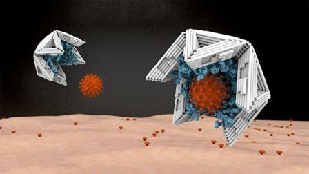 Нанооболочки, построенные по технологии ДНК-оригами, покрытые изнутри связывающими вирус молекулами, работают как вирусные ловушки © Technical University of Munich/Elena-Marie Willner / DietzLab