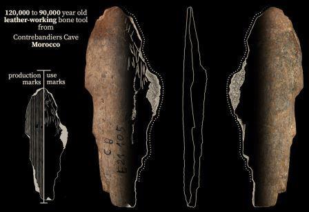 Костяной инструмент возрастом 120-90 тысяч лет из пещеры Контребандье в Марокко © Jacopo Niccolò Cerasoni